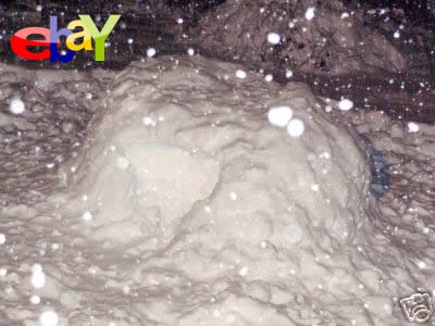 雪の家 イグルー イーベイ 出品 ebay