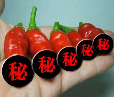 ペニス型トウガラシ2色◎Peter Pepper Red & Yellow各5粒